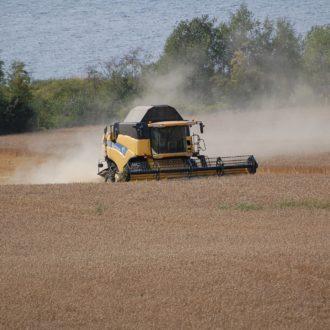 Kornproduksjon på store Gillund