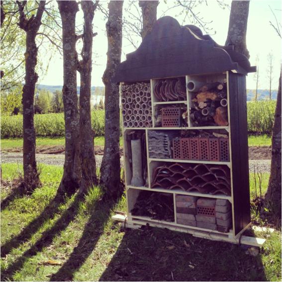 Insektshotell for hedersgjester på solbærgården Mølstad