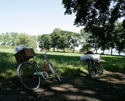 sykkeltur midt i mjøsa